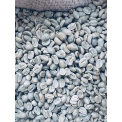 Peru SHB - zielone ziarno